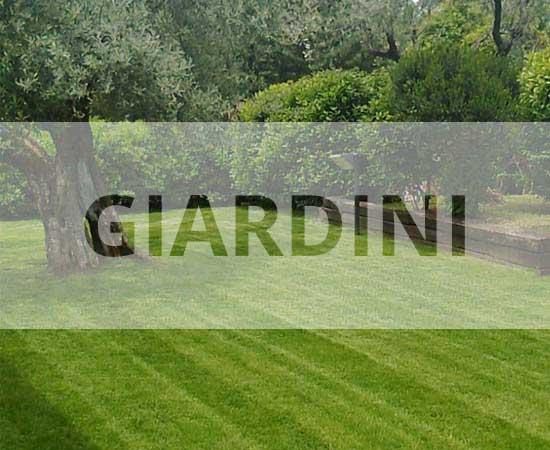 Verde giardino giardini in erba sintetica e naturale - Erba artificiale per giardini ...