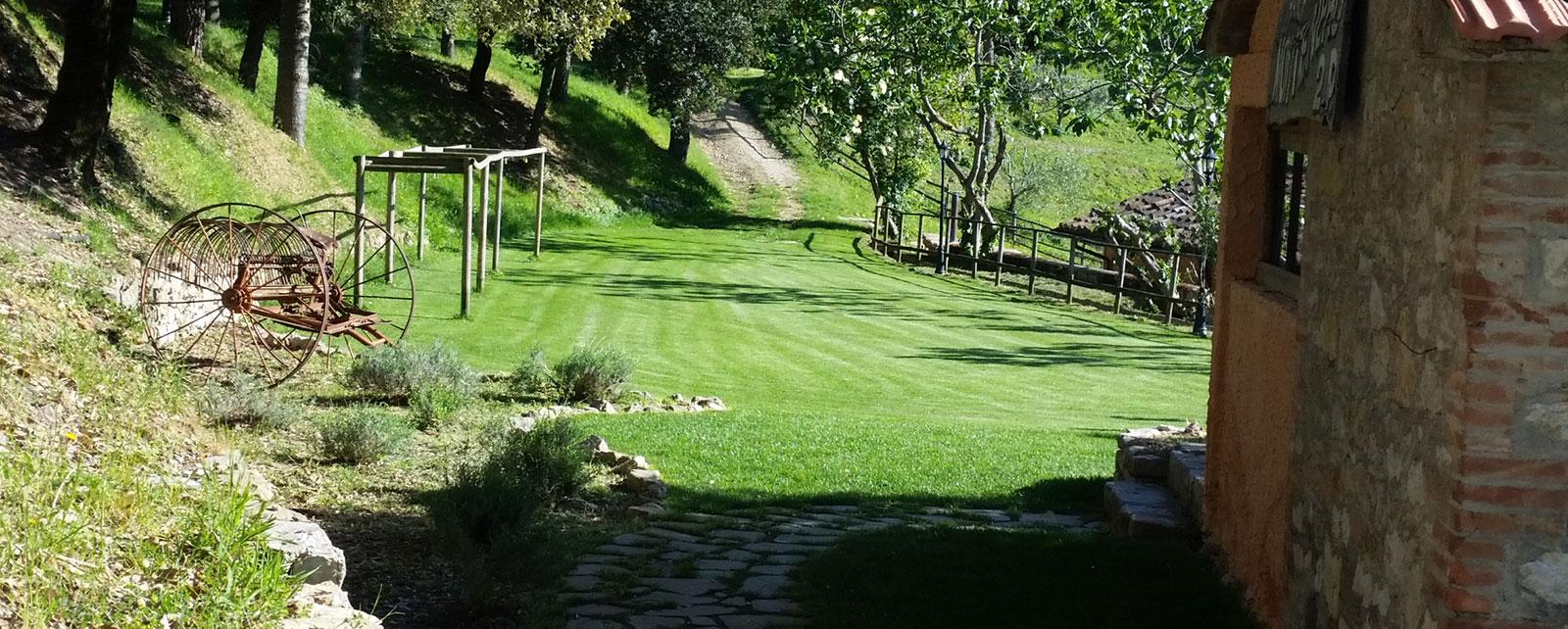 Realizzazione e manutenzione giardino perugia for Giardini ornamentali